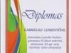Diplomas (3)