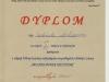 dyplom linkiewicza