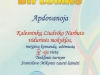 diplomas (1)